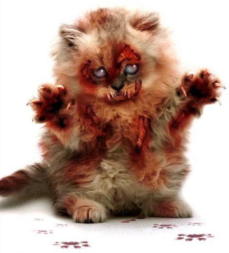 horrorcat