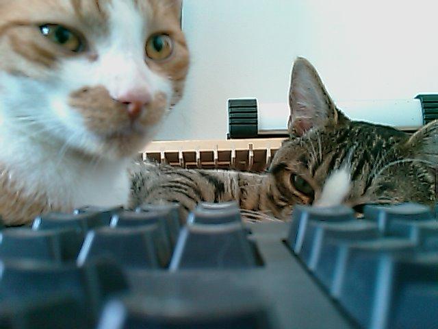Achter het toetsenbord